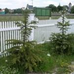 ogrodzenia rzeszów